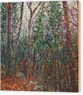 Montville Wood Wood Print