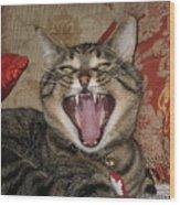 Monty's Yawn Wood Print