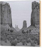Monumentvalley 34 Wood Print