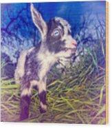 Moo Cow Love Grass Wood Print