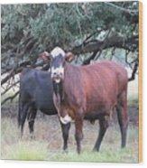 Moo Cow Wood Print