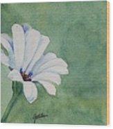 Mood Flower II Wood Print