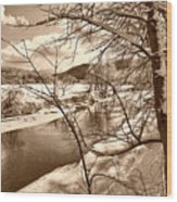 Mood Of Winter Wood Print