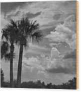 Moody Florida Sky Wood Print