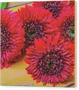 Moody Red Gerbera Dasies Wood Print