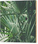 Moody Tropical Leaves Wood Print