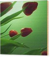 Moon  And Tulips Wood Print