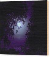 Moon - Between - The - Trees Wood Print