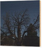 Moon Brings Life To An Old Tree Wood Print