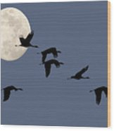 Moon Flight Wood Print