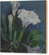 Moon Flower  Wood Print