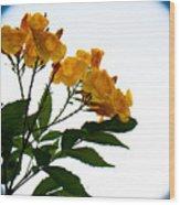 Moon Flowers Wood Print