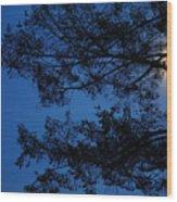 Moon Hiding In The Tree Wood Print