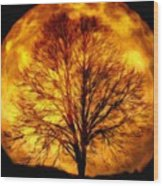 Moon - Id 16236-105015-0839 Wood Print