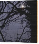 Moon In Inky Blue Sky Wood Print