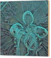 Moon Jellyfish Art Wood Print
