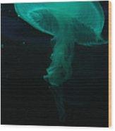 Moon Jellyfish Wood Print