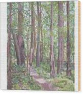 Moon Lake Pathway Wood Print