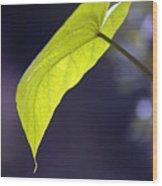 Moon Leaf Wood Print