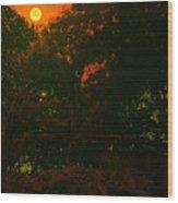 Moon Of Dark Night Wood Print