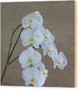 Moon Orchid Wood Print