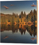 Moon Over Mill Pond Wood Print