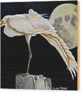 Moon Over Mississippi A Snowy Egrets Perspective Wood Print