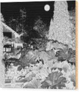 Moon Over Stanley Park Wood Print by Will Borden