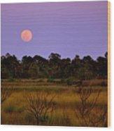 Moon Over The Refuge Wood Print