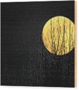 Moon Over The Trees Wood Print