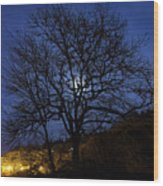 Moon Rise Behind Tree Silhouette At Night Wood Print