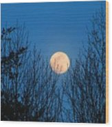 Moon Rising In The Trees Wood Print
