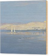 Moon Rising Over The Nile, 1900 Wood Print