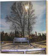 Moon Shadow Iroquois Point -1462 Wood Print