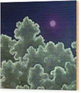 Moon Stories Wood Print