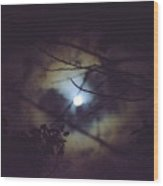 Moonlight And Branch 2 Wood Print