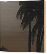 Moonlight And Palms Wood Print