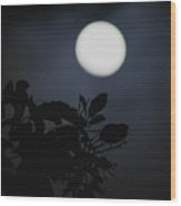 Moonlight And Tree 1 Wood Print