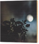 Moonlight And Tree 2 Wood Print