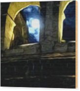 Moonlight At The Colosseum Wood Print