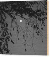 Moonlight - B And W Wood Print