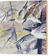 Moonlight Canadian Geese Wood Print