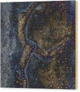 Moonlight Dancer Wood Print