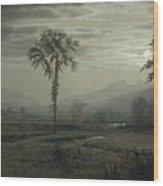 Moonlight On Mount Lafayette Wood Print