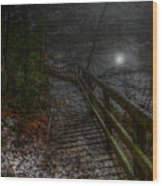 Moonlight On The River Bank Wood Print