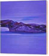 Moonlight On Tundra Ice Wood Print