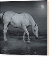 Moonlight Shadow Wood Print