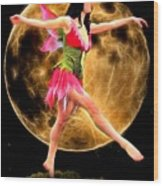 Moonlight Stroll Of A Fairy Wood Print