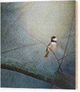Moonlit Chickadee Wood Print