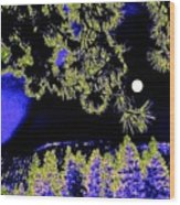 Moonlit High Country Wood Print